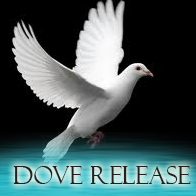 DoveRelease-Main